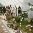 "Сградата на ""Флора-Бургас"" готова до май"